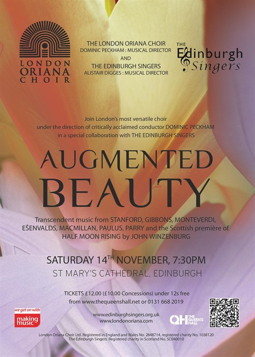 Augmented Beauty flyer